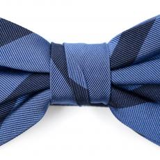 Azure and Dark Blue Silk Bow Tie