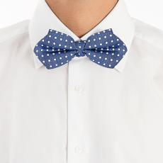 Blue with White Pois Silk and Linen Bow Tie
